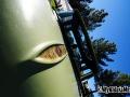 2010 Goodguys Car Show Pictures