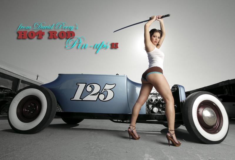 http://www.myrideisme.com/Blog/wp-content/uploads/2008/04/lark23.jpg