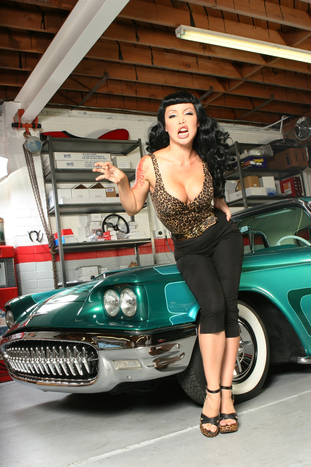 Hot-rod-pinup-Masuimi-Max-3.jpg