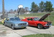 the two Mustangs cooking off the winter blues